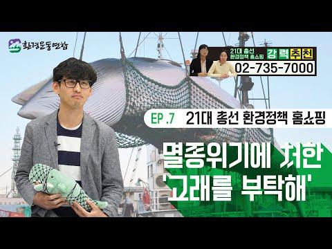 [21대 총선 환경정책 홈쇼핑] ⑦멸종위기에 처한 고래를 부탁해!